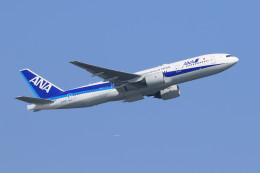 オポッサムさんが、羽田空港で撮影した全日空 777-281/ERの航空フォト(写真)