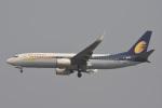 Kilo Indiaさんが、チャトラパティー・シヴァージー国際空港で撮影したジェットエアウェイズ 737-8HXの航空フォト(写真)