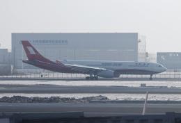 TAOTAOさんが、ハルビン太平国際空港で撮影した上海航空 A330-343Xの航空フォト(飛行機 写真・画像)