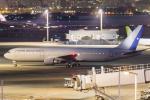 mameshibaさんが、羽田空港で撮影したチリ空軍 767-3Y0/ERの航空フォト(写真)