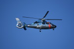 kumagorouさんが、那覇空港で撮影した沖縄県警察 AS365N3 Dauphin 2の航空フォト(写真)