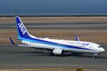 Joshuaさんが、中部国際空港で撮影した全日空 737-881の航空フォト(写真)