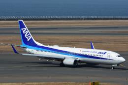 Joshuaさんが、中部国際空港で撮影した全日空 737-881の航空フォト(飛行機 写真・画像)