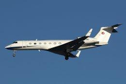 isiさんが、羽田空港で撮影した南山公務 G-V-SP Gulfstream G550の航空フォト(写真)