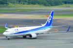 中村 昌寛さんが、新千歳空港で撮影した全日空 737-881の航空フォト(写真)
