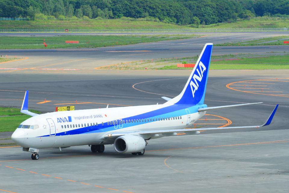 中村 昌寛さんの全日空 Boeing 737-800 (JA56AN) 航空フォト