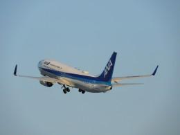 おっつんさんが、能登空港で撮影した全日空 737-881の航空フォト(飛行機 写真・画像)