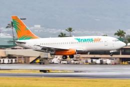 Photo : T.Nakanishiさんが、カフルイ空港で撮影したトランスエア 737-2T4C/Advの航空フォト(飛行機 写真・画像)
