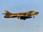 nori-beatさんが、厚木飛行場で撮影したATAC Hunter F.58の航空フォト(写真)