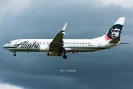 Photo : T.Nakanishiさんが、カフルイ空港で撮影したアラスカ航空 737-890の航空フォト(飛行機 写真・画像)