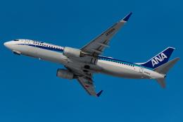 KAMIYA JASDFさんが、函館空港で撮影した全日空 737-881の航空フォト(飛行機 写真・画像)