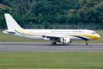Ariesさんが、シンガポール・チャンギ国際空港で撮影したミャンマー国際航空 A320-214の航空フォト(写真)