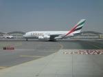 cornicheさんが、ドバイ国際空港で撮影したエミレーツ航空 A380-861の航空フォト(飛行機 写真・画像)