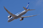 Cスマイルさんが、成田国際空港で撮影した全日空 787-9の航空フォト(写真)