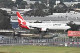 たっしーさんが、シドニー国際空港で撮影したカンタス航空 737-838の航空フォト(飛行機 写真・画像)