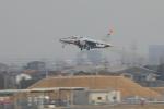 じゃりんこさんが、名古屋飛行場で撮影した航空自衛隊 T-4の航空フォト(写真)