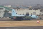 じゃりんこさんが、名古屋飛行場で撮影した航空自衛隊 C-130H Herculesの航空フォト(写真)