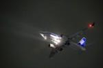 T.Sazenさんが、伊丹空港で撮影した全日空 737-781の航空フォト(写真)