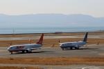 ハピネスさんが、関西国際空港で撮影したチェジュ航空 737-8ASの航空フォト(飛行機 写真・画像)