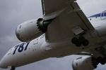m-takagiさんが、伊丹空港で撮影した全日空 787-8 Dreamlinerの航空フォト(飛行機 写真・画像)