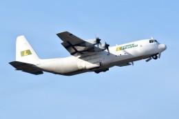shimashimaさんが、RJGGで撮影したリンデン・エアカーゴ L-100-30 Herculesの航空フォト(飛行機 写真・画像)