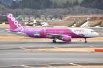shimashimaさんが、成田国際空港で撮影したピーチ A320-214の航空フォト(写真)