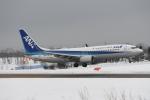 なないろさんが、紋別空港で撮影した全日空 737-881の航空フォト(写真)