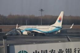 TAOTAOさんが、長春龍嘉国際空港で撮影した東海航空 737-86Jの航空フォト(飛行機 写真・画像)