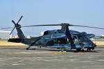 Joshuaさんが、名古屋飛行場で撮影した航空自衛隊 UH-60Jの航空フォト(写真)