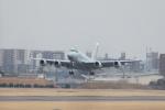 totsu19さんが、名古屋飛行場で撮影した海上自衛隊 P-1の航空フォト(写真)