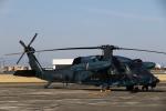 さんたまるたさんが、名古屋飛行場で撮影した航空自衛隊 UH-60Jの航空フォト(写真)