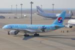 じゃりんこさんが、中部国際空港で撮影した大韓航空 A330-223の航空フォト(写真)