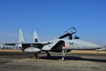 Joshuaさんが、名古屋飛行場で撮影した航空自衛隊 F-15J Kai Eagleの航空フォト(写真)