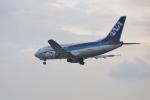 FRTさんが、松山空港で撮影したANAウイングス 737-5L9の航空フォト(飛行機 写真・画像)