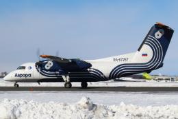 セブンさんが、新千歳空港で撮影したオーロラ DHC-8-200Q Dash 8の航空フォト(飛行機 写真・画像)