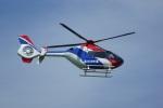 FRTさんが、松山空港で撮影した毎日新聞社 EC135T1の航空フォト(飛行機 写真・画像)