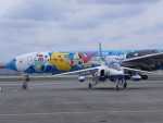 おっつんさんが、那覇空港で撮影した航空自衛隊 T-4の航空フォト(写真)