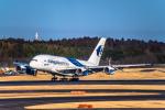 Cygnus00さんが、成田国際空港で撮影したマレーシア航空 A380-841の航空フォト(写真)