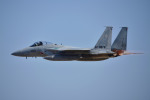 Yamaro_nikkorさんが、茨城空港で撮影した航空自衛隊 F-15J Eagleの航空フォト(写真)