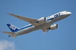 OMAさんが、成田国際空港で撮影した全日空 787-8 Dreamlinerの航空フォト(写真)