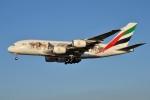 IL-18さんが、成田国際空港で撮影したエミレーツ航空 A380-861の航空フォト(写真)