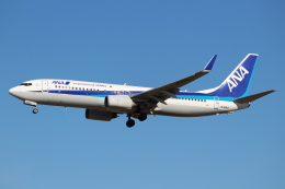OMAさんが、成田国際空港で撮影した全日空 737-881の航空フォト(飛行機 写真・画像)