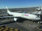 MF8さんが、ジョン・F・ケネディ国際空港で撮影したワモス・エア A330-243の航空フォト(写真)