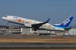 つみネコ♯2さんが、伊丹空港で撮影した全日空 737-881の航空フォト(写真)