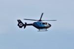 もぐ3さんが、名古屋飛行場で撮影した中日新聞社 EC135P2の航空フォト(写真)