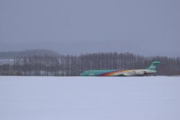senyoさんが、女満別空港で撮影した日本エアシステム MD-90-30の航空フォト(飛行機 写真・画像)