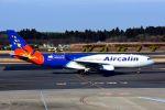 成田国際空港 - Narita International Airport [NRT/RJAA]で撮影されたエアカラン - Aircalin [SB/ACI]の航空機写真
