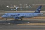 みるぽんたさんが、成田国際空港で撮影したヤクティア・エア 100-95LRの航空フォト(写真)
