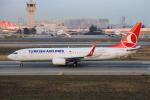 武彩航空公司(むさいえあ)さんが、アタテュルク国際空港で撮影したターキッシュ・エアラインズ 737-8F2の航空フォト(写真)