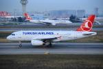 武彩航空公司(むさいえあ)さんが、アタテュルク国際空港で撮影したターキッシュ・エアラインズ A319-132の航空フォト(写真)